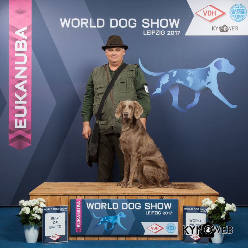 BEST OF BREED 2513