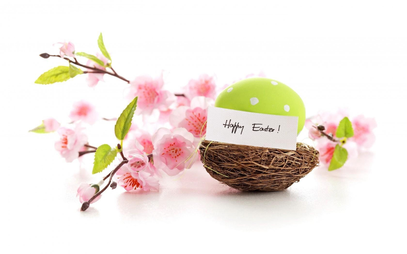 happy easter spring flowers eggs