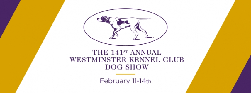 141 WESTMINSTER KENNEL CLUB SHOW 2017